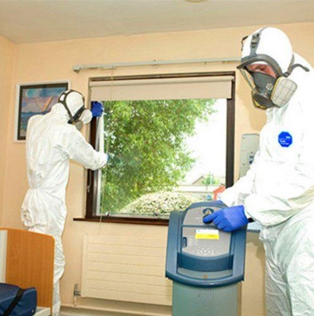 Disinfection and Sanitation Service