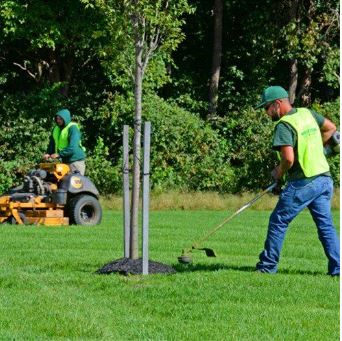 Landscapine Service