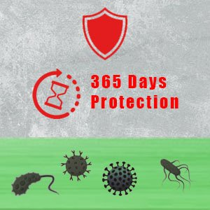Disinfection services : virus eliminated